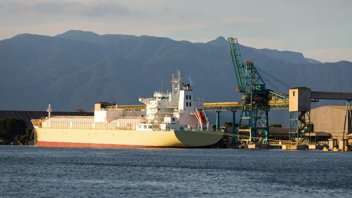 Salt Importers In Brazil